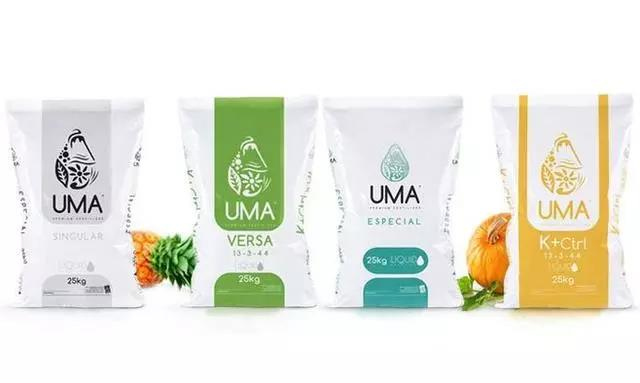 Organic green food packaging